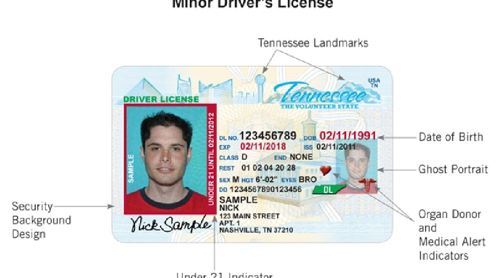 Moves Under-21 Tennessee With Driver's Vertical Wztv Licenses Forward