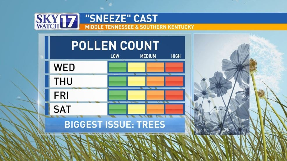 HIGH pollen to end out the week in middle Tennessee | WZTV