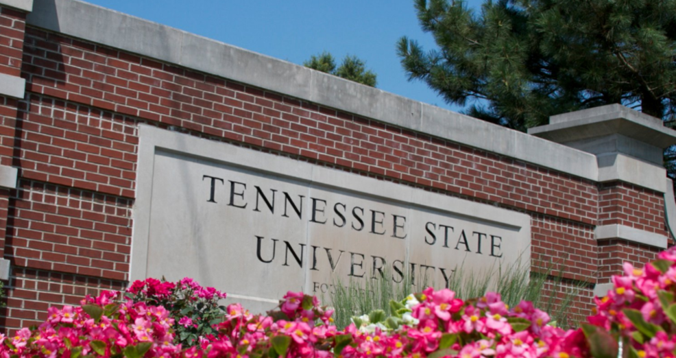 Image result for tennessee state university students