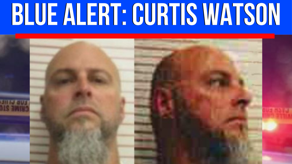 Henry County Tn Arrests