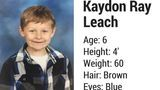 Missing Tennessee boy found safe, per TBI